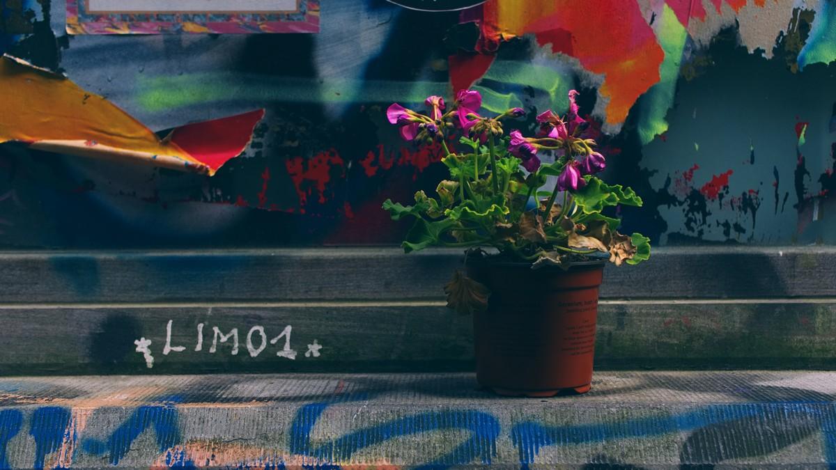 Straatfotografie mythes