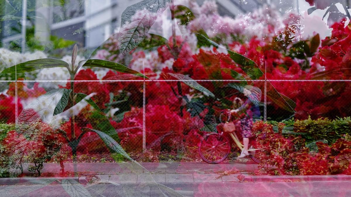 Dubbele belichting in straatfotografie